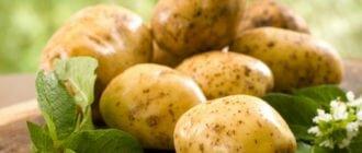 Картофель при повышенной кислотности в желудке