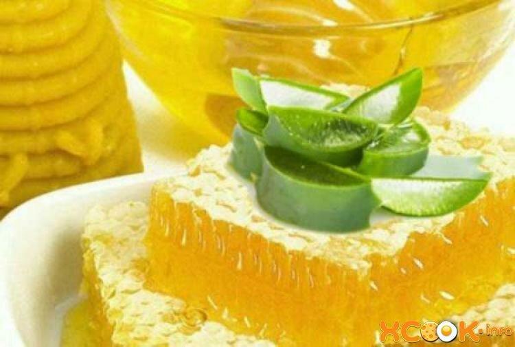 Лечение желудка алоэ с медом